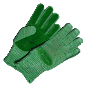 The photo of gloves